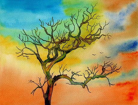 Radiance by Brenda Owen
