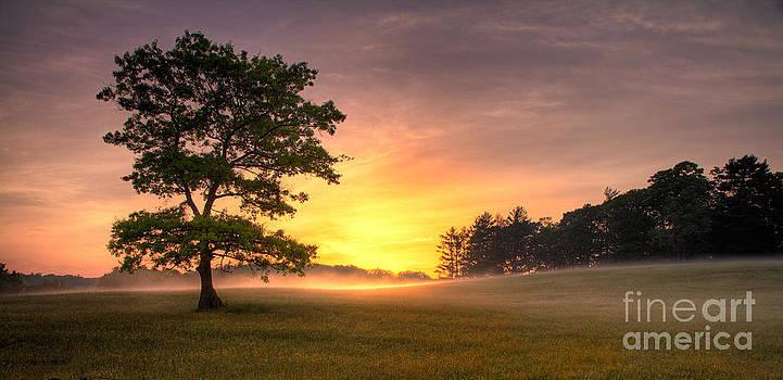 Radiant Gold Sunrise in the Blue Ridge by Dan Carmichael