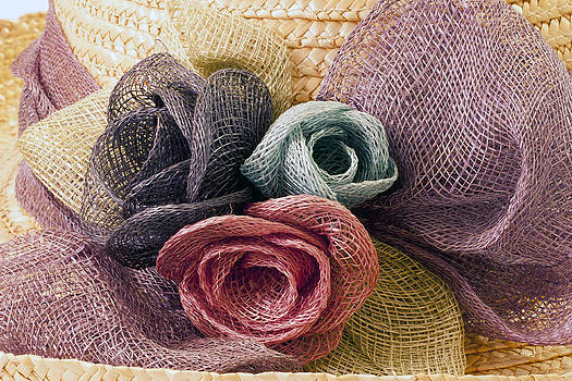 Sandra Foster - Raffia Roses Macro