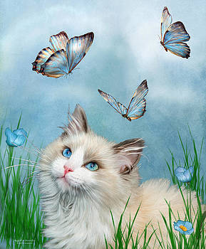 Ragdoll Kitty And Butterflies by Carol Cavalaris