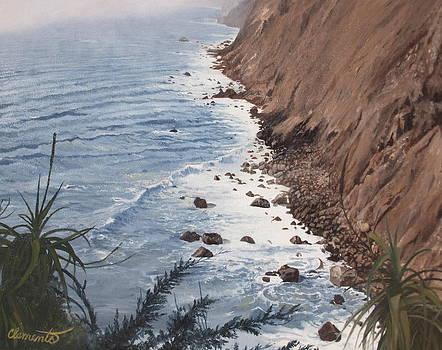 Ragged Point California by Barbara Barber