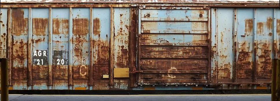 Rail Mural  by Michael  Siers