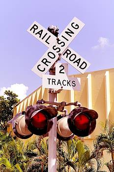 Railroad Crossing by Andres LaBrada