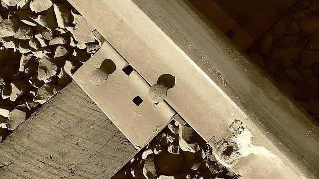 Railroad tie in Sepia by Sue McElligott