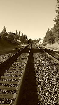 Railroad Tracks by Sue McElligott
