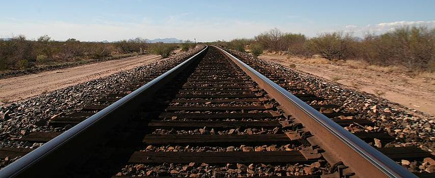 Rails by David S Reynolds
