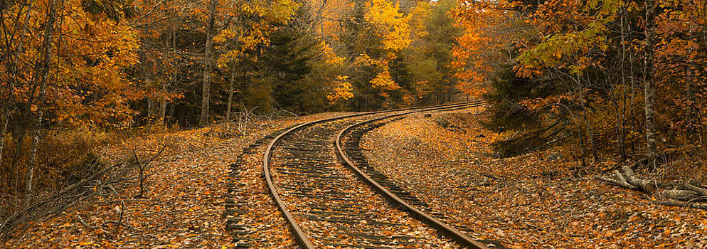 Rails to Autumn by Patrick Downey