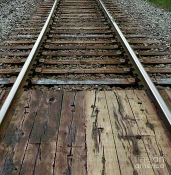 Gail Matthews - Railway Track closeup