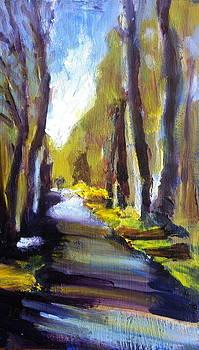 Railway Walk by Fiona Jack
