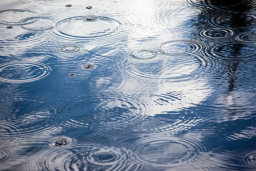 Rain drops by Charles Lupica