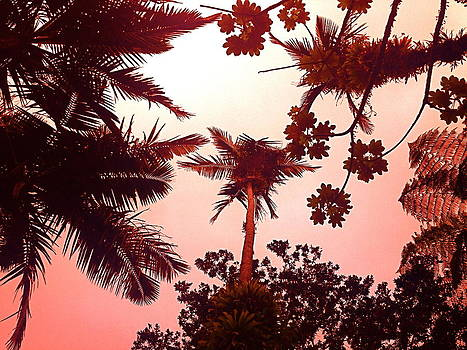 Rain Forest Canopy Red by Hannah Rose