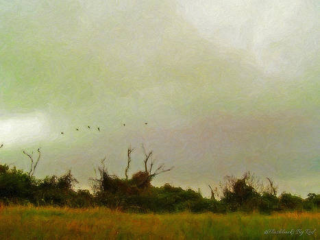 Rain on the Marsh by Melody McBride