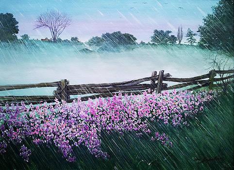 Rain Shower by Bryan Ahn