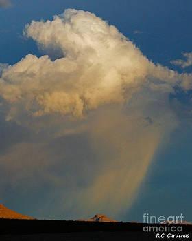 Rain Upon Me by Rebecca Christine Cardenas