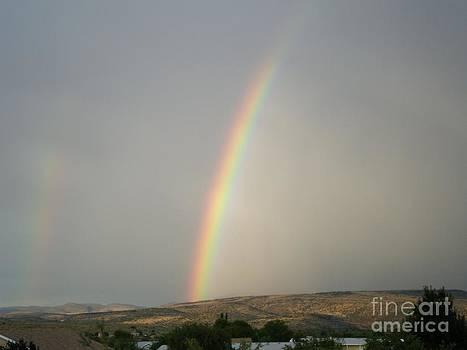 Rainbow by Debbie Wells