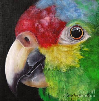 Rainbow Face by Mary Hughes