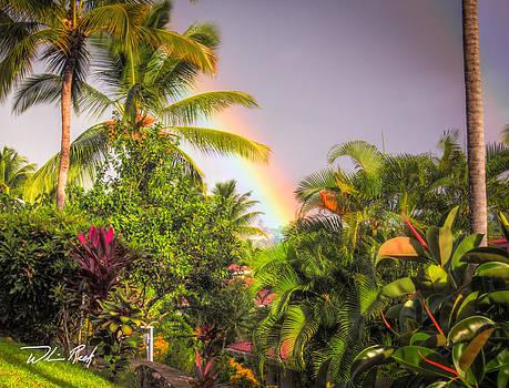 William Reek - Rainbow In Paradise