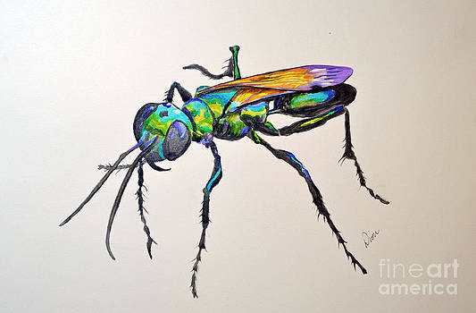 Rainbow Insect by Dion Dior