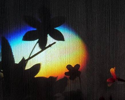 Rainbow Mirage by Jen Seel