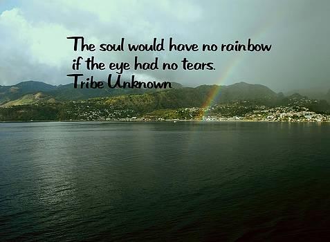 Gary Wonning - Rainbow of the soul