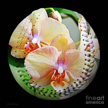 Andee Design - Rainbow Orchids Baseball Square