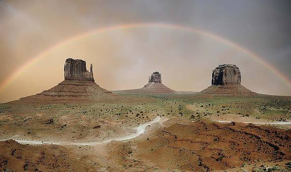 Rainbow Over Monument Valley by Renee Hardison