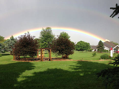 Rainbow by Pat Thompson