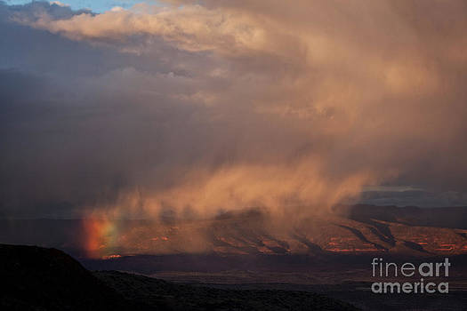 Rainbow Rain by Ron Chilston