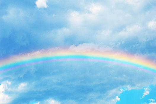 Rainbow by Sherry Allen