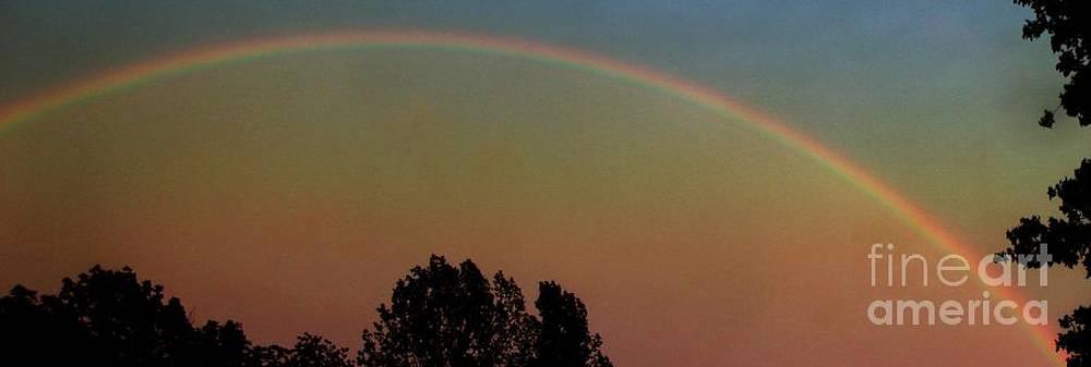 Gail Matthews - Rainbow Sunset Silhouette