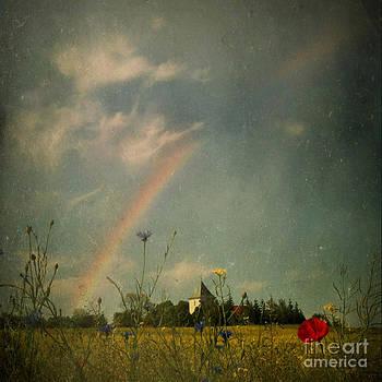 Rainbow by Sylvia Lakoma