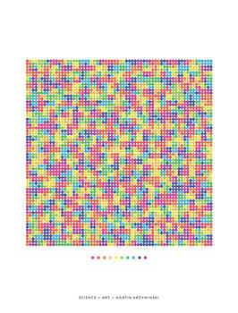 Martin Krzywinski - Rainbow Transition on Hilbert Curve of Order 6