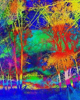 Rainbow Trees by Bill Zielinski