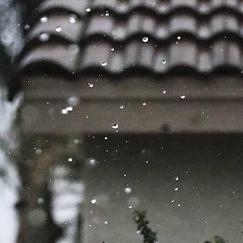 #raindrops #rain #macro #outdoors by Mark Jackson