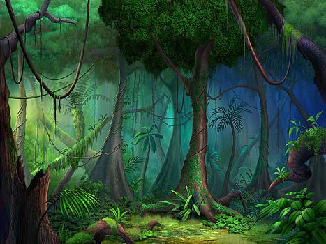 Rainforest by Philip Straub