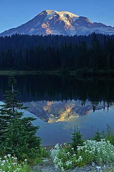 Rainier Alpenglow by Eric Albright