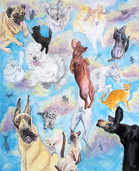 Raining cats and dogs  by Heidi Rissmiller
