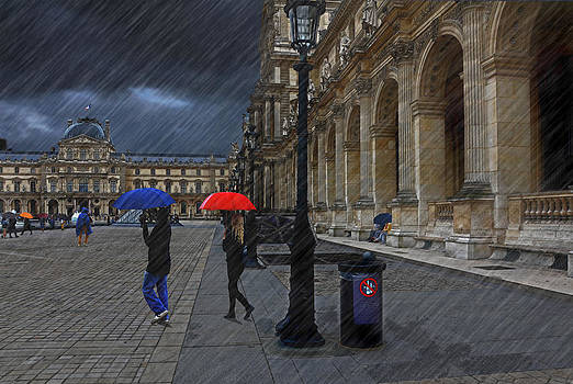 Raining Cats And Dogs by Pascal Desvignes