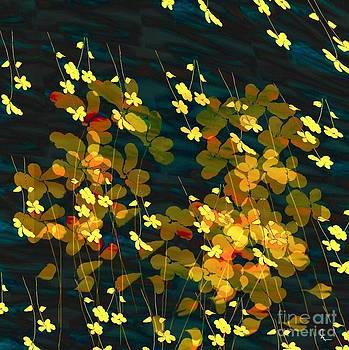 Raining Flowers by Mahnaz Ahmed