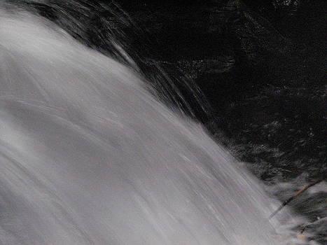 Sandy Tolman - Rainstorm - ivp - 6498