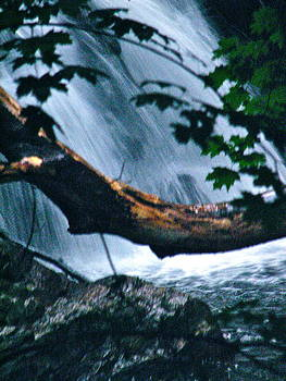 Sandy Tolman - Rainstorm - ivp - 6531