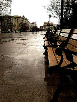 Rainy Day by Lucy D