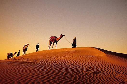Dennis Cox - Rajasthani caravan