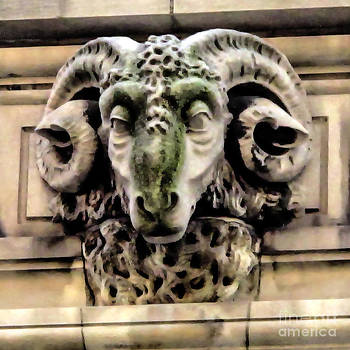 Ram Relief by Anne Ferguson