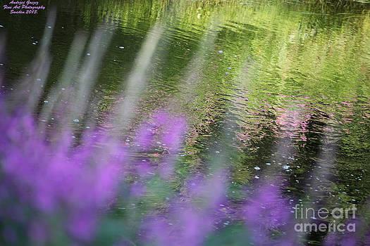 Rande Vouz  and midsummer wonderful day prayer on Heaven by  Andrzej Goszcz