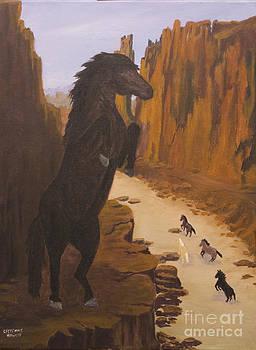 Range War by J Cheyenne Howell