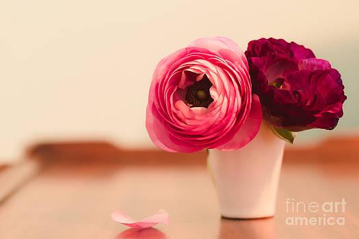 Ranunculus Love II by Mary  Smyth