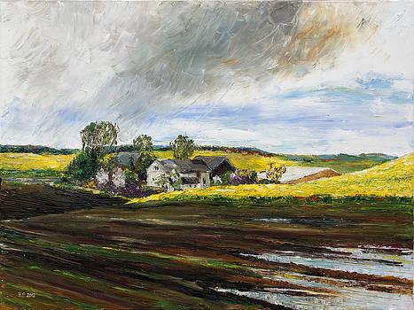 Rape Fields Around Kastanienhof Bentwisch by Barbara Pommerenke