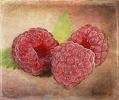 Barbara Orenya - Raspberries