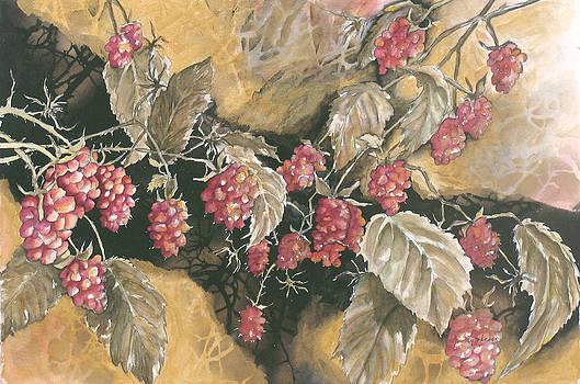 Raspberries by Kay Johnson